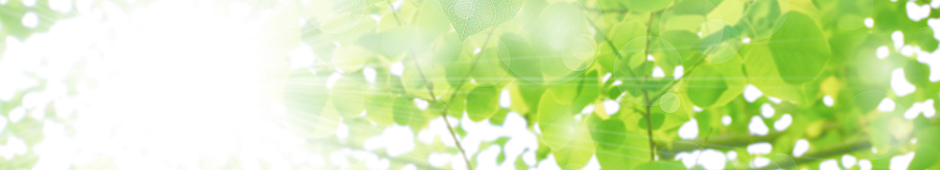 神奈川県川崎市宮前区宮崎の内科一般・循環器科・皮膚科 もぎ循環器科内科医院